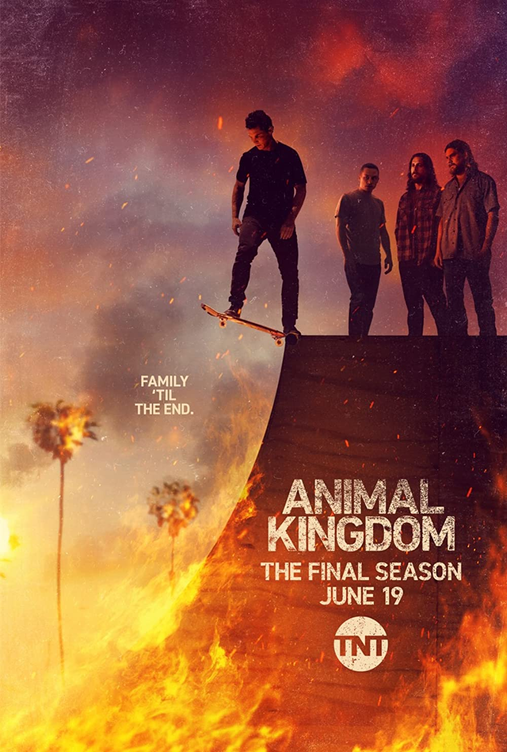 Animal kingdom netflix