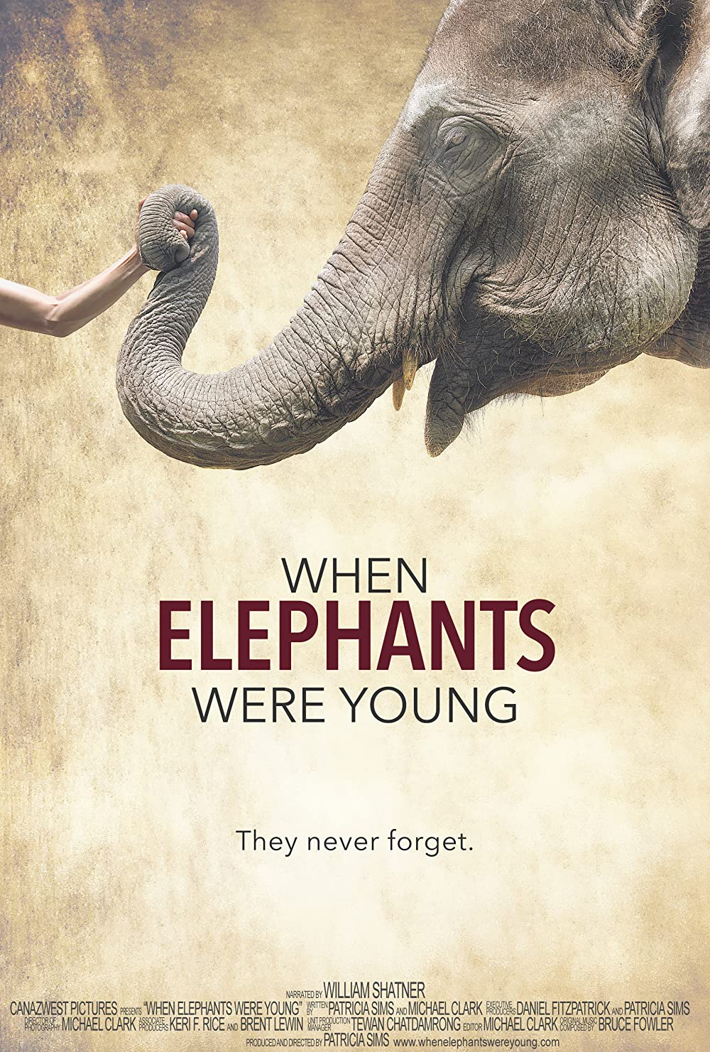 When Elephants Were Young poster