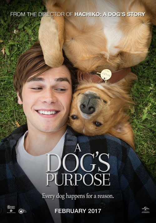 A Dog S Purpose Movie Rental