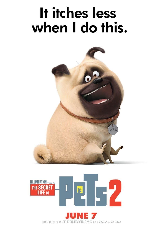 Secret Life Of Pets Movie