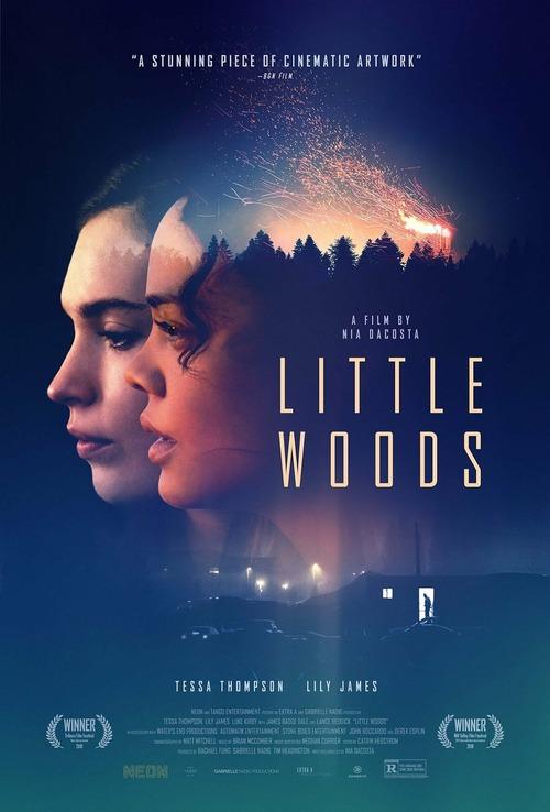 little-woods-2018.jpg